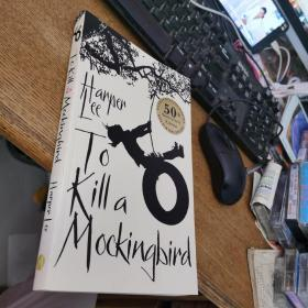 To Kill a Mockingbird  杀死一只知更鸟