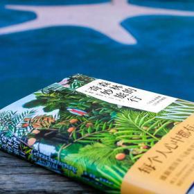 正版新书森林的奇妙旅行 大自然的社交网络 彼得渥雷本作品2册 现货 科普读物 森林实用指南 荒野求生自然万物科普百科书畅销书籍