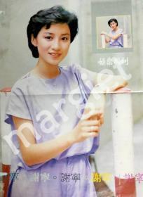 谢宁海外杂志珍贵大海报4K(A2)
