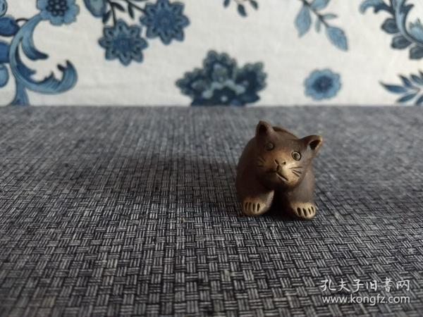 俗名:鼠貓