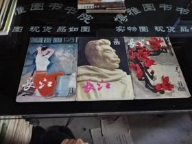 长江文学丛刊(季刊)1981年1-3期  3本合售  52-5号柜