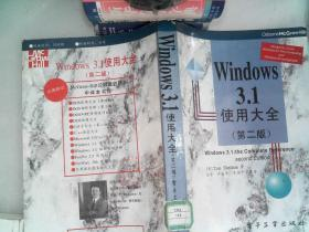 Windows 3.1使用大全 第二版