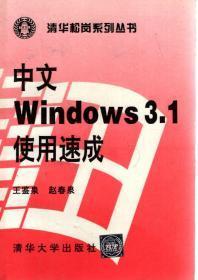 中文Windows3.1使用速成