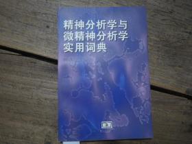《精力分析学与微精力分析学实用词典》