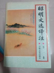 昭明文选译注(全6卷)包邮
