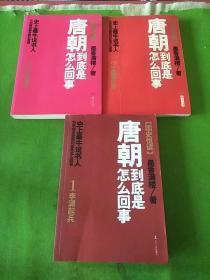唐朝到底是怎么回事1李渊起兵、2贞观之治、3女主天下  共3本合售