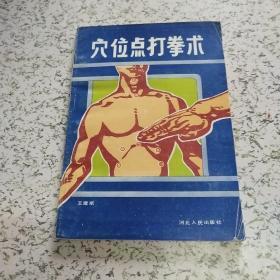 穴位点打拳术(河北人民出版社)