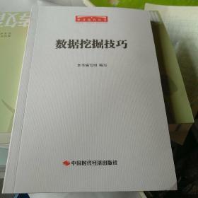 数据挖掘技巧/审计技巧丛书