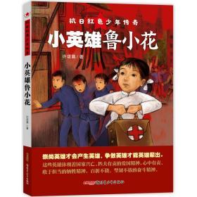 抗日红色少年传奇:小英雄鲁小花(儿童小说)