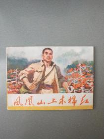 文革连环画凤凰山上木棉红