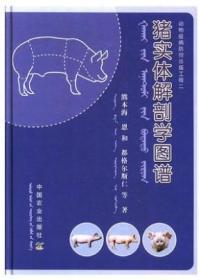 现代农业科技专著大系:动物解剖学彩色图谱