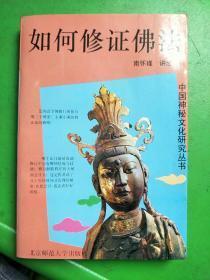 中国神秘文化研究丛书・如何修正佛法