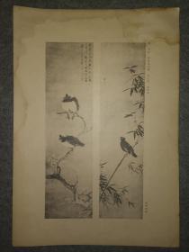 民国珂罗版:吴纪~竹枝鸲鹆图、沈周~慈哺图(吴湖帆 藏品)