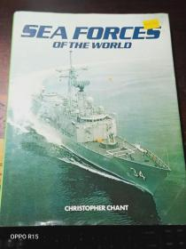 SEA FORCES OF THE WORLD 【外文原版】