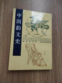 中国韵文史 下册 竖版