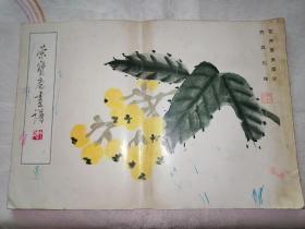 荣宝斋画谱(齐白石花卉草虫部分)