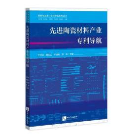 先进陶瓷材料产业专利导航/创新与发展专利导航系列丛书