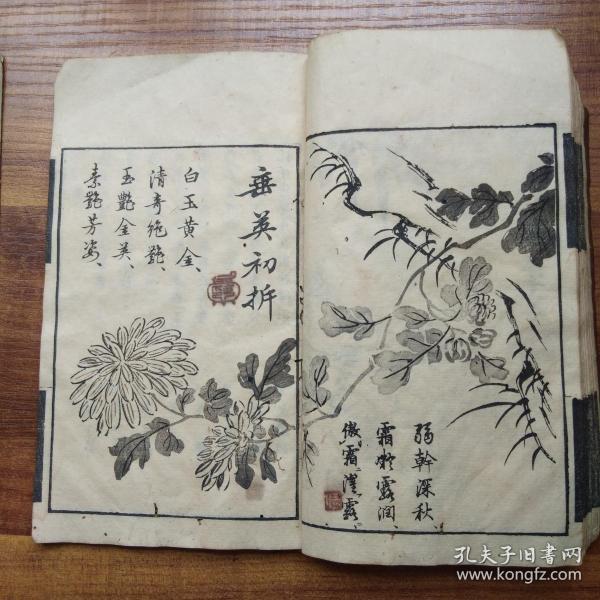 《 漢畫早學》初集    卷三梅  卷四菊 兩冊  木刻版畫多  兩色套印  明治13年(1880年)