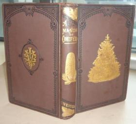 1881年 A Manual of The Coniferae《针叶树木图鉴》 珍贵初版本 大量木刻雕版版画插图 大开本 金碧辉煌 绝伦美艳