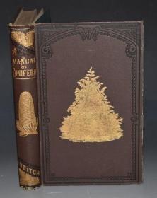 【补图】1881年 A Manual of The Coniferae《针叶树木图鉴》 珍贵初版本 大量木刻雕版版画插图 大开本 金碧辉煌 绝伦美艳