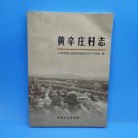 黄辛庄村志