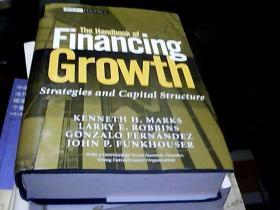 融资增长手册:策略与资本结构  THE HANDBOOK OF FINANCING GROWTH