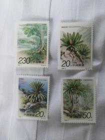邮票 1996-7 苏铁