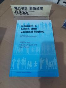 Economic Social and Cultural Rights 精装