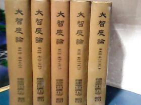 大智度论 ( 全五册)