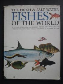 THE FRESH & SALT WATER FISHES OF THE WORLD【世界淡水和咸水鱼类】