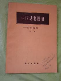 中国动物图谱 软体动物(第二册)