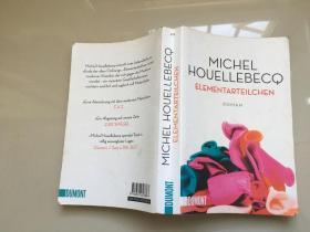德文原版MICHEL HOUELEBECQ ELEMENTARTEILCHEN