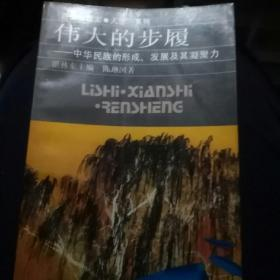 伟大的步履:中华民族的形成、发展及其凝聚力