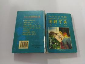 小学生多功能图解字典 /陈炜斌 电子出版物数据中心
