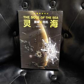 中国硬派科幻:灵海 黑镜危机 钟云