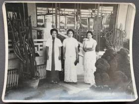 民国时期 旗袍贵妇三美合影照一枚(手拿时髦手包,每人佩戴手表,穿作打扮颇为讲究)