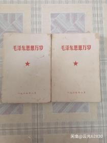 毛泽东思想万岁,上下两册厚本,