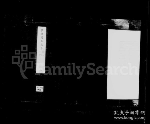任邱边氏族谱 [22卷]复印件