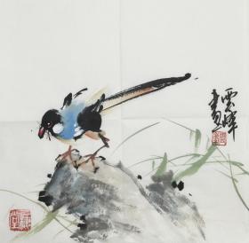 【超值特价】【保真】【云峰】中国当代着名书画家、中国书法家协会会员、中央书画研究院院士、副院长、中国书画家协会会员、大学教授、北京名人书画院高级院士、小品花鸟(33*33CM)11