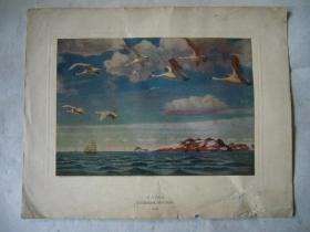 油画:大海 原苏联印刷品 16开大小