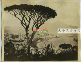 清代意大利那不勒斯海岸港口码头全景蛋白老照片一张,尺寸为25.7X20.8厘米
