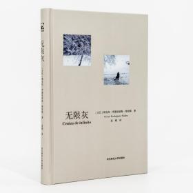 无限灰 维克托罗德里格斯努涅斯 古巴 袁婧 翻译 精装 拉美诗歌 现货