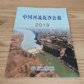 中国河流泥沙公报2019  水利水电出版社
