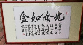 特价处理作者原作书法字体中堂一副光阴如金北京杨震保真