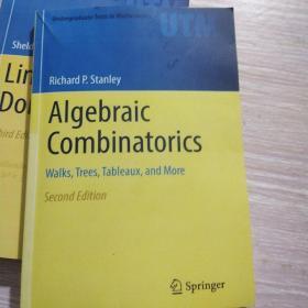Algebraic Combinatorics on Convex Polytopes