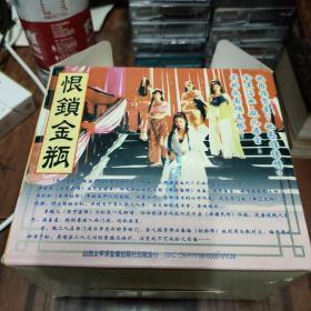 恨锁金梅—20碟VCD