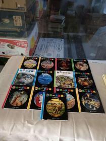 第一次发现丛书:手电筒系列(13本合售)