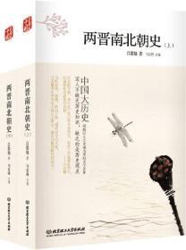 中国大历史-两晋南北朝史(全2册)