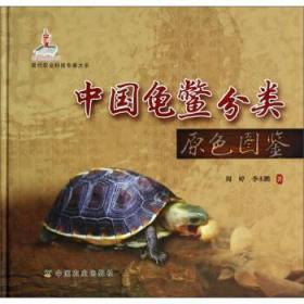 中国龟鳖分类原色图鉴