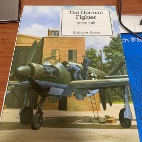 德国战斗机 战机 1917 后